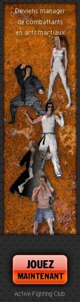 arts martial : jeu en ligne gratuit